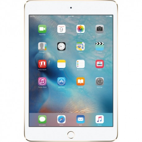 Apple 32GB iPad mini 4 (Wi-Fi Only, Space Gray)